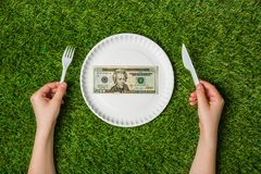 Hands holding paper plate with dollars over grass Stock Image
