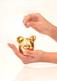 Hands holding piggy bank Royalty Free Stock Image