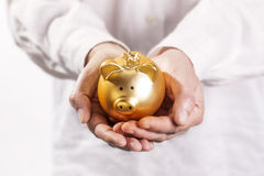 Hands holding piggy bank Stock Photography