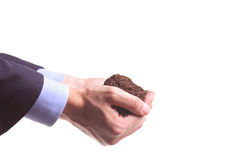 Hands holding a pile of soil Stock Images