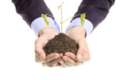 Hands holding a pile of soil with a plant Stock Photos