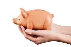 Savings. Hands holding pink pig piggy bank, economics and finance Stock Image
