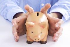 Savings. Hands holding pink pig piggy bank, economics and finance Stock Photos