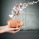 Economics and finance. Hands holding pink pig piggy bank, economics and finance stock photo