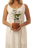 Hands holding potted plant Royalty Free Stock Photos