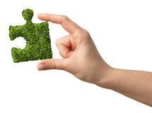 Hands holding a puzzle shaped green leafs Stock Images