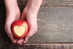 Hands holding red apple royalty free stock images
