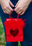 Hands holding gift bag Royalty Free Stock Photo
