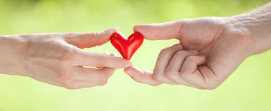 Hands holding red heart. Together, light green background Royalty Free Stock Photo