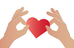 Hands holding the red heart Royalty Free Stock Photos