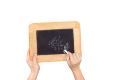 Hands holding slate with photo of flower isolated on white Royalty Free Stock Photography