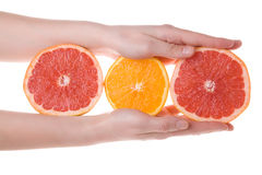 Hands holding sliced orange and grapefruit Royalty Free Stock Photos