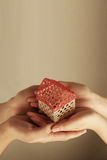Hands holding a small house Royalty Free Stock Photo