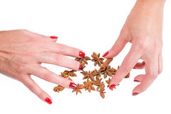 Hands holding spices, cinnamon and anise Stock Photo
