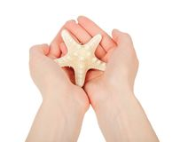 The hands holding a starfish Stock Image