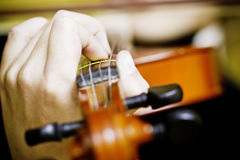 Hands holding strings on a violin. Photo of a hand holding a violin with fingers on the strings stock photo