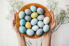 Hands holding stylish easter eggs in wooden plate with spring flowers on white wooden background. Modern easter eggs painted with. Natural dye in blue, grey stock images
