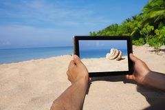 Hands holding tablet pc on beach Royalty Free Stock Photos
