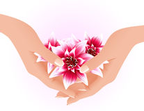 Hands holding tropical flowers Royalty Free Stock Photography