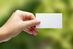 Hands holding a white business visit card, gift, ticket, pass, p Stock Image