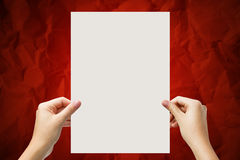 Hands holding a white paper blank isolated on red background Stock Photos