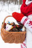 Hands holding a winter basket Royalty Free Stock Images