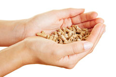 Hands holding wood pellets Royalty Free Stock Images