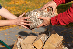 Hands holding wood Stock Photography