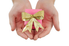 Hands holds a gift Royalty Free Stock Photo