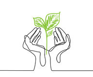Hands holds a living green plant seedling. Continuous line drawing. Vector illustration Royalty Free Stock Photography