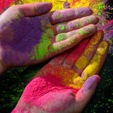Hands with holi paint Royalty Free Stock Image