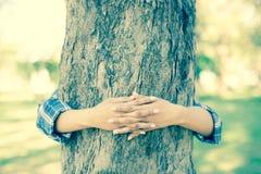 Hands hugging tree Stock Images