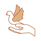 Hands human with cute dove flying icon Stock Photos