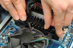 Hands installing computer parts Royalty Free Stock Photos