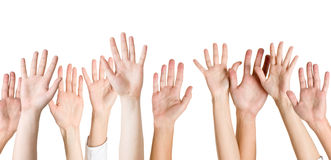 Hands isolated Stock Photo
