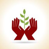 Hands Leaf Green Nature Natural Health design template Royalty Free Stock Photos