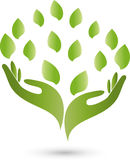 Hands, leaves, naturopath and nature logo. Hands and leaves in green, naturopath and nature logo stock illustration