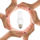 Hands with light bulb Royalty Free Stock Photo