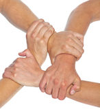 Hands linked together. Isolated backgroud royalty free stock photo