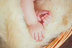 Hands of little baby in basket Royalty Free Stock Photography