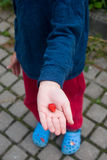 Hands of a little boy with sweet juicy strawberries Royalty Free Stock Image