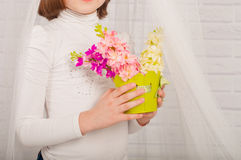 Hands of a little girl with spring flowers Stock Photo