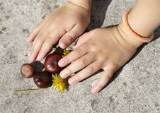 Hands of little gril and the chesunts Royalty Free Stock Images
