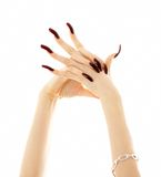 Hands with long acrylic nails. Over white royalty free stock photo