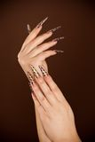 Hands with long fingernail and beautiful manicure Stock Images