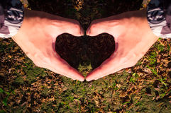 Hands love heart. Hands heart from love in sunset light royalty free stock photos