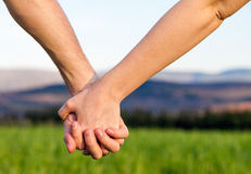 Hands Love Royalty Free Stock Image
