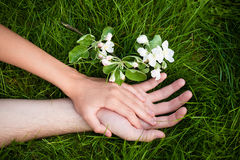 Hands of lovers on grass Stock Image