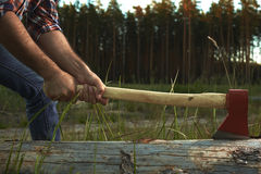 Hands of Lumberjack with Ax Royalty Free Stock Image
