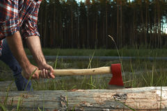Hands of Lumberjack with Axe Stock Photo